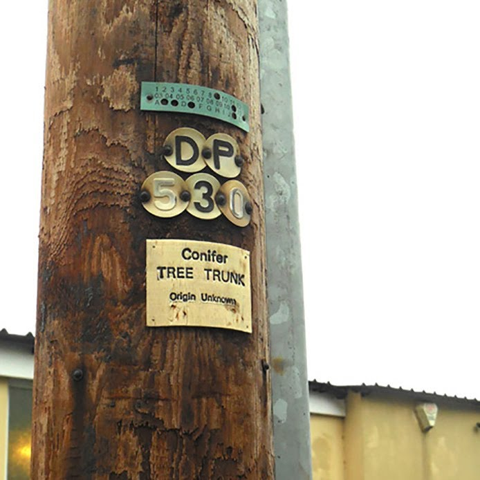 Lara Luna Bartley, telephone pylon, Bristol, urban intervention